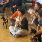 第36回 犬目線で感じて学ぶ トレーナー育成のPRODOGスクールが開校