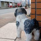 水害を知らせた「忠犬伝説」が息づく北陸の町 商店街にはたくさんの犬の置物が鎮座