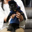 みんなの安全、守るニャン 制服姿の黒猫2匹、マスコットに お年寄りをいやす任務も?