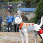 山の向こうの狩猟犬やモンキードッグ、ドローンで位置がわかる! 徳島で実験