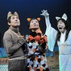 平均年齢70歳の役者らが演じる猫たち アマチュア劇団、殺処分をテーマに「ねこら!2017」上演
