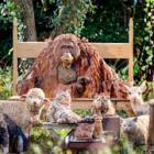 きざむ、動物の生きた証し 被災体験きっかけ 「いのち」生み出す彫刻家はしもとさん、22日から作品展