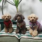 犬が食べてはいけない植物 ユリ科など毒性を含む草花に注意を!