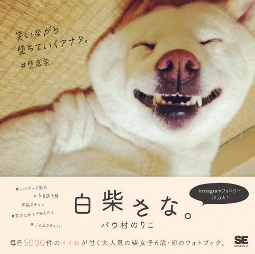 「白柴さな。」翔泳社刊、926円(税別)