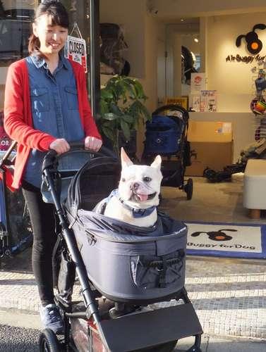 「エアバギーフォードッグ駒場公園店」の内村真織さんと、エアバギーに乗ったポポくん。ママはテクスチャーデニムを選んだ。見た目がおしゃれなのも、エアバギーの特徴だ=東京都渋谷区