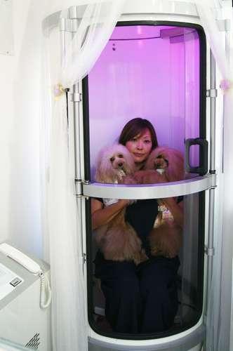 大野さんは、愛犬2匹をひざに抱えてカプセルに入った=東京都世田谷区