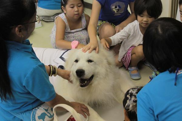 大きなピレネー犬の周りにはたくさんの子どもが集まった(c)大塚敦子