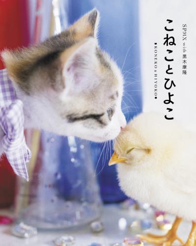 光文社 1,000円+税