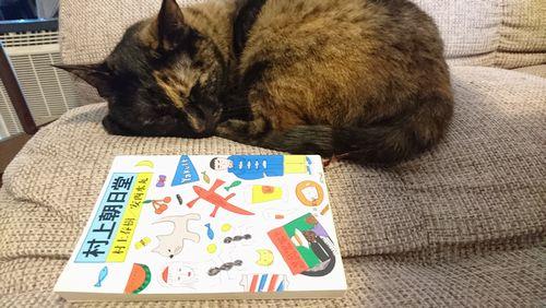 あたり猫と、あたり本