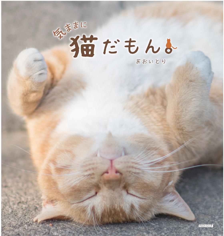 青菁社 1,300 円+税