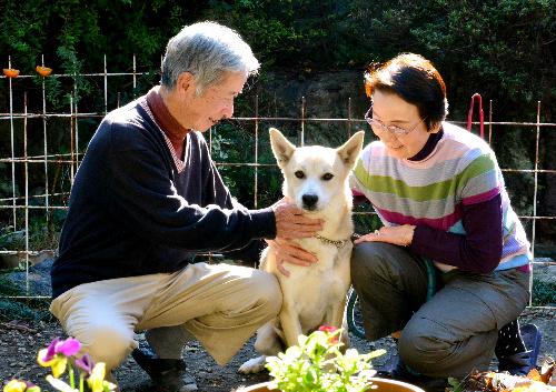 名和さん夫婦と、名古屋市動物愛護センターから引き取ったサンタナ=名古屋市南区