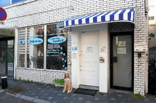 カフェの外観。店の窓から犬がのぞいていることもある