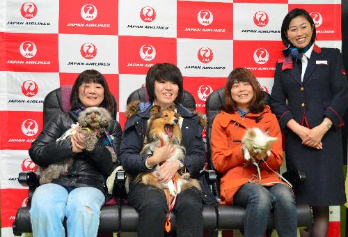 愛犬と一緒に空の旅を楽しんだ参加者=成田空港