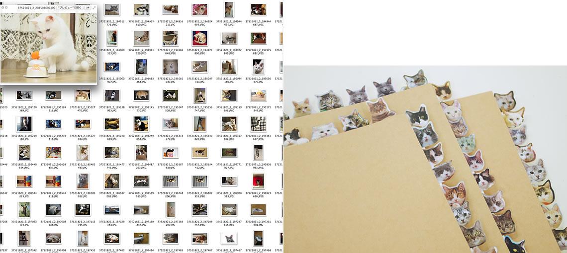 すべての投稿写真を審査し、 多数のサンプルを制作しながら最終選考を行った
