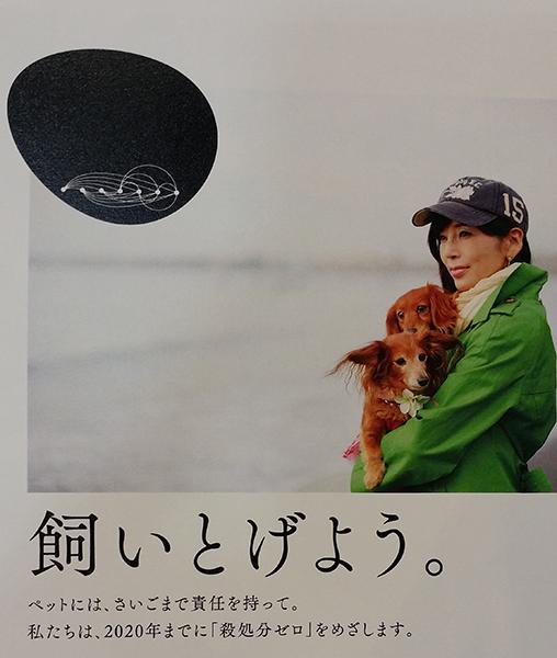 「エンジン01文化戦略会議」動物愛護委員会では、愛犬家だった故・川島なお美さんの写真を今も使わせていただいています