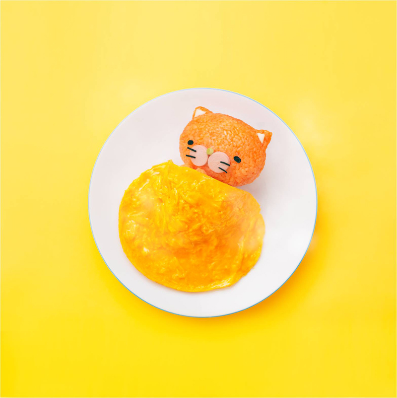 寝冷えネコ(きよニャ)<br/>寝冷えネコ目、寝冷えネコ科のケチャップライスでできたネコ。