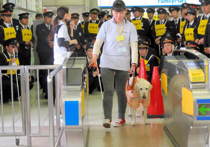 盲導犬を連れた人が改札を通る際の誘導について学ぶ駅員ら=千葉県船橋市